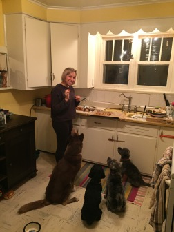 dogs-eager-for-their-vegan-bacon-treats